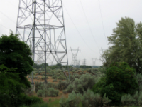 Bruxelas quer multar Portugal por atraso na lei sobre eficiência energética